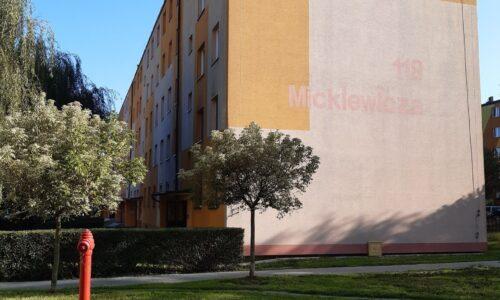 Mickiewicza 118 – docieplenie stropu piwnic