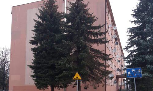 Mickiewicza 154/65 – wolne mieszkanie